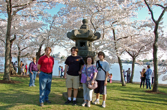 Little Reviews: Poem for Monday and DC Cherry Blossoms