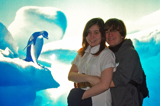 Dolphin Watching Virginia Beach Prices